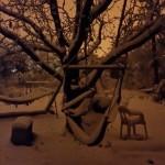 ערסל בשלג